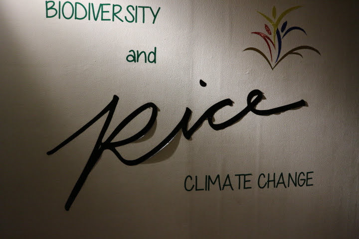 Rice-Biodiversity and Climate Change