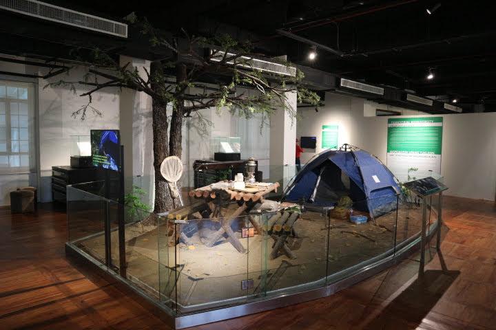 ギャラリー5ナチュラリスト遠征モデル