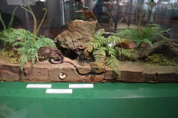 ギャラリー5地面模型