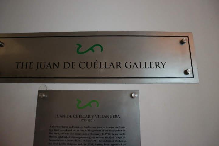 TheJuanDeCuellarGallery