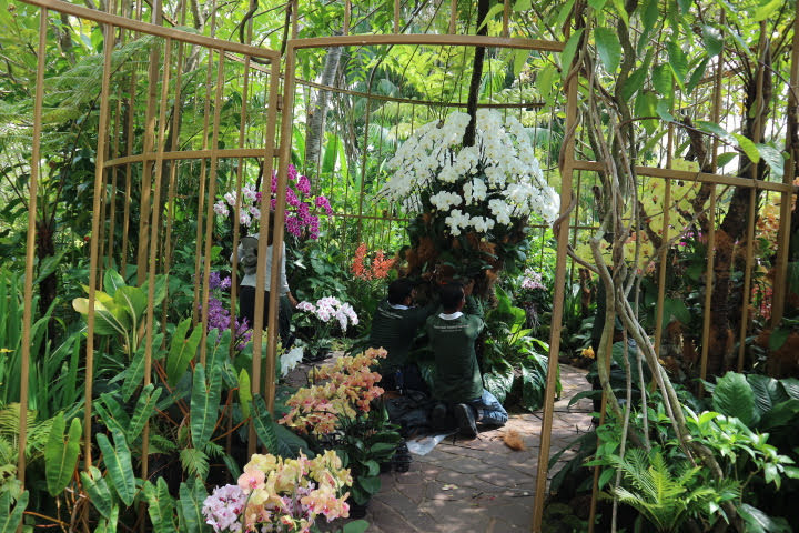 シンガポール植物園オーキッドガーデン内部