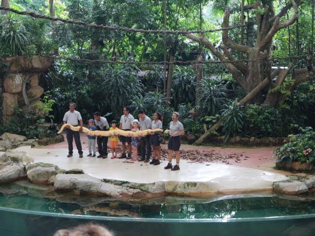 シンガポール動物園動物ショーヘビ