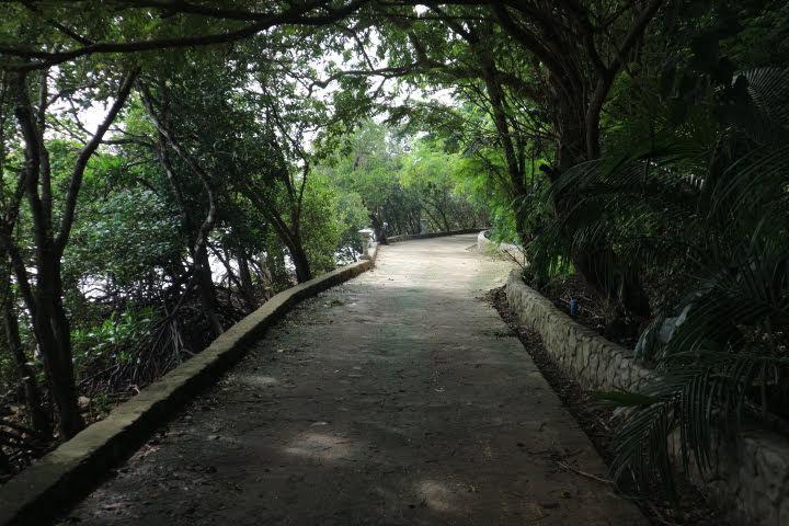 Sunlight Eco Tourism Island Resort島の道