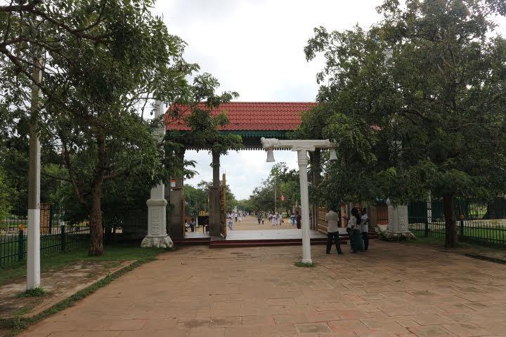 スリー・マハー菩提樹のお寺