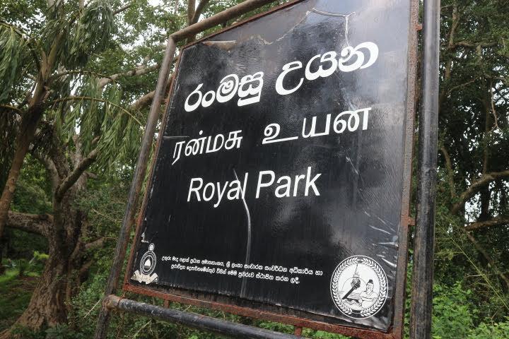 イスルムニア精舎横のRoyalPark