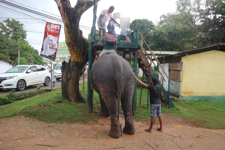 象さん乗り場