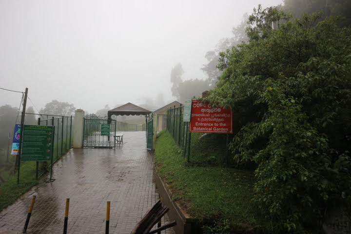 ハッガラ植物園入り口
