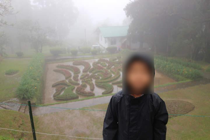 ハッガラ植物園迷路
