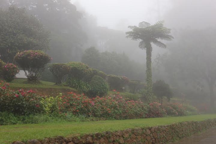 ハッガラ植物園出口