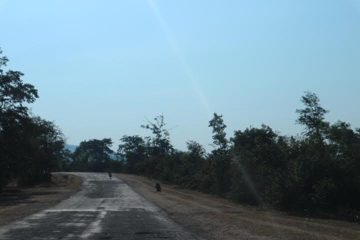 ポッパ山への道中